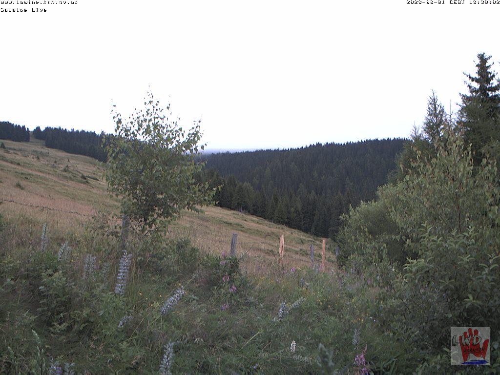 Webcam Weißbergerhütte-Saualpe/Klein Sankt Paul